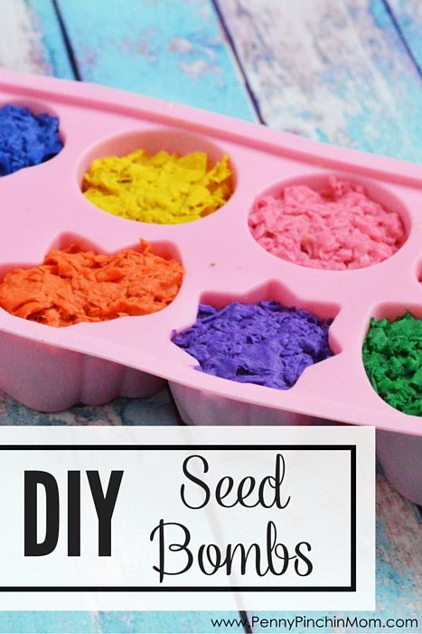 Warm weather and springtime are here! Enjoy the sunshine and make planting fun with these DIY seed bombs! They're so much fun to make!