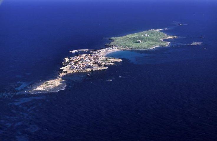 Isla de Tabarca | Ayuntamiento de #Alicante #CostaBlanca