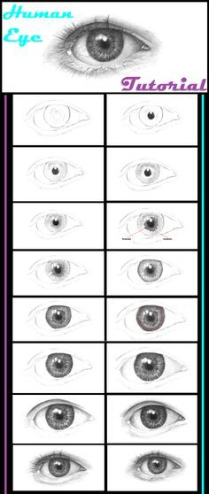 How to draw a human eye. #human_eye_tutorial