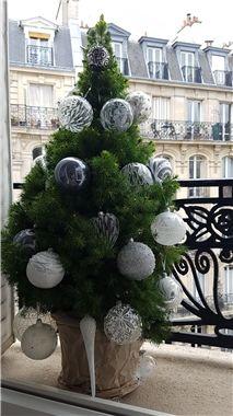 Vánoční stromek jinak, malý vánoční stromek v květináči, šedá