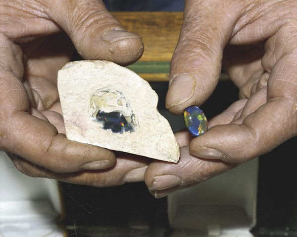 A miner holding half a natural opal-bearing 'nobby' with the cut stone made from the other half of the nobby. #opal