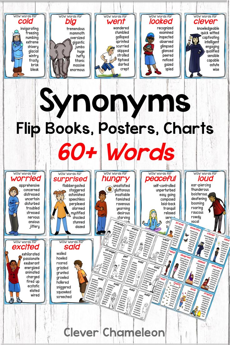 Synonym Charts, Posters and Flip Books for 20 Synonyms   Flip book ...