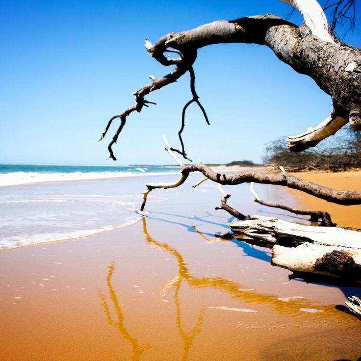 The golden sands of Rules Beach, Bundaberg.