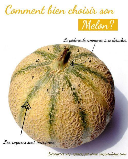 Astuces pour bien choisir son melon