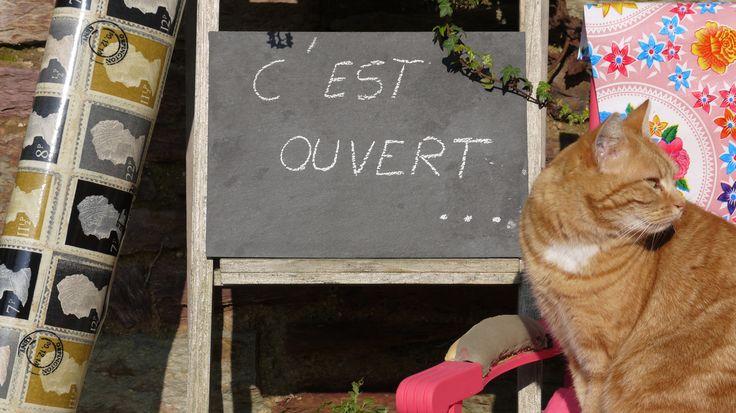 Lancement de la page Facebook Where is Voltaire?