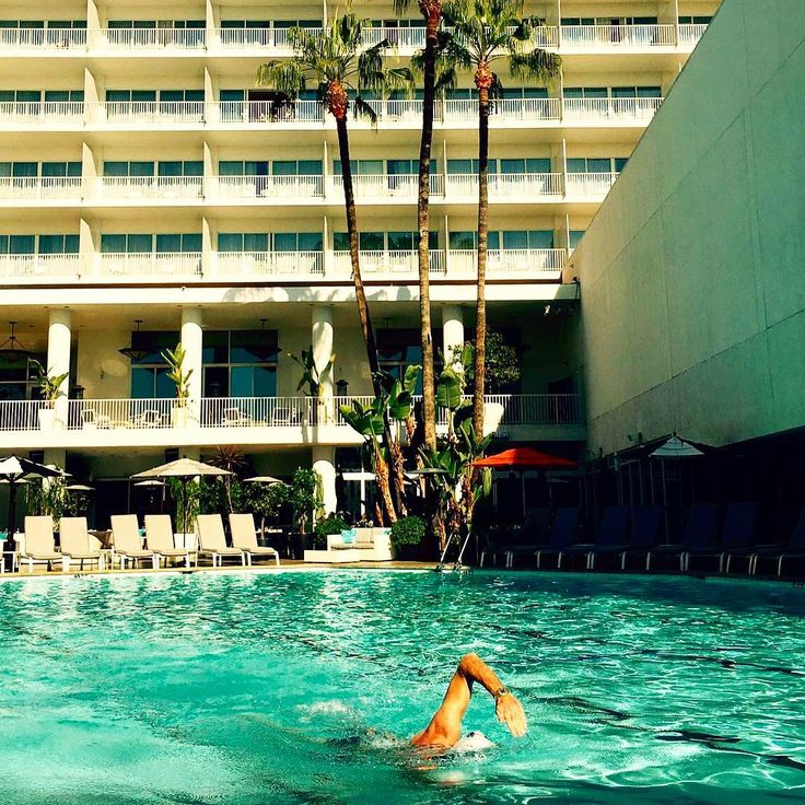 Morning laps at the @beverlyhilton best way to start the day! #swim #laps #beverlyhills #losangeles #excercise #water #morningworkout