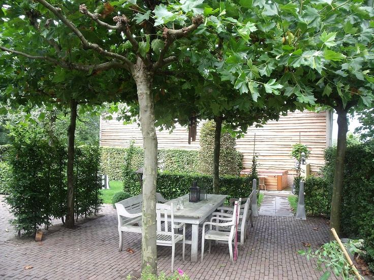 25 beste idee n over terras schaduw op pinterest buiten schaduw en achtertuin schaduw - Buiten terras model ...