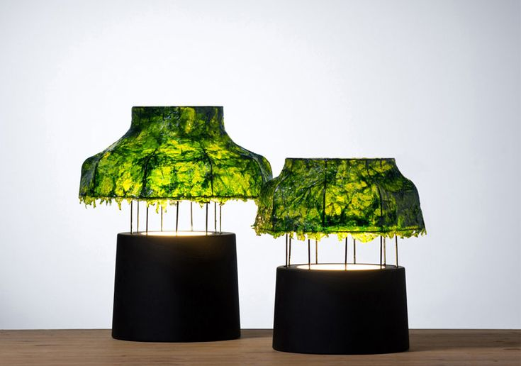 the table lamp unconventionally utilizes seaweed as its main material for a domestic lighting environment.