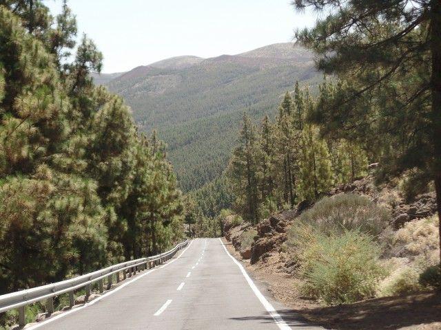 Descendo do Teide