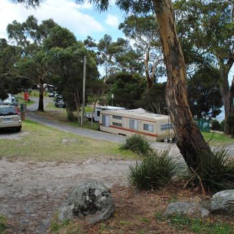 Bridport Holiday Park - North East Tasmania Tourism