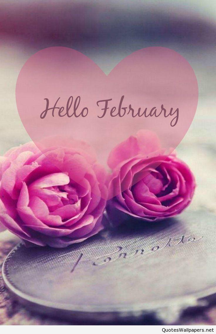Love card mobile wallpaper Hello February 2016
