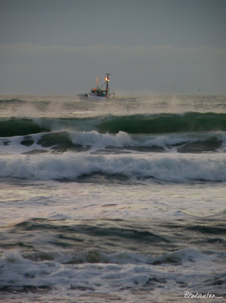 50 best images about southern oregon coast on pinterest for Oregon coast fishing
