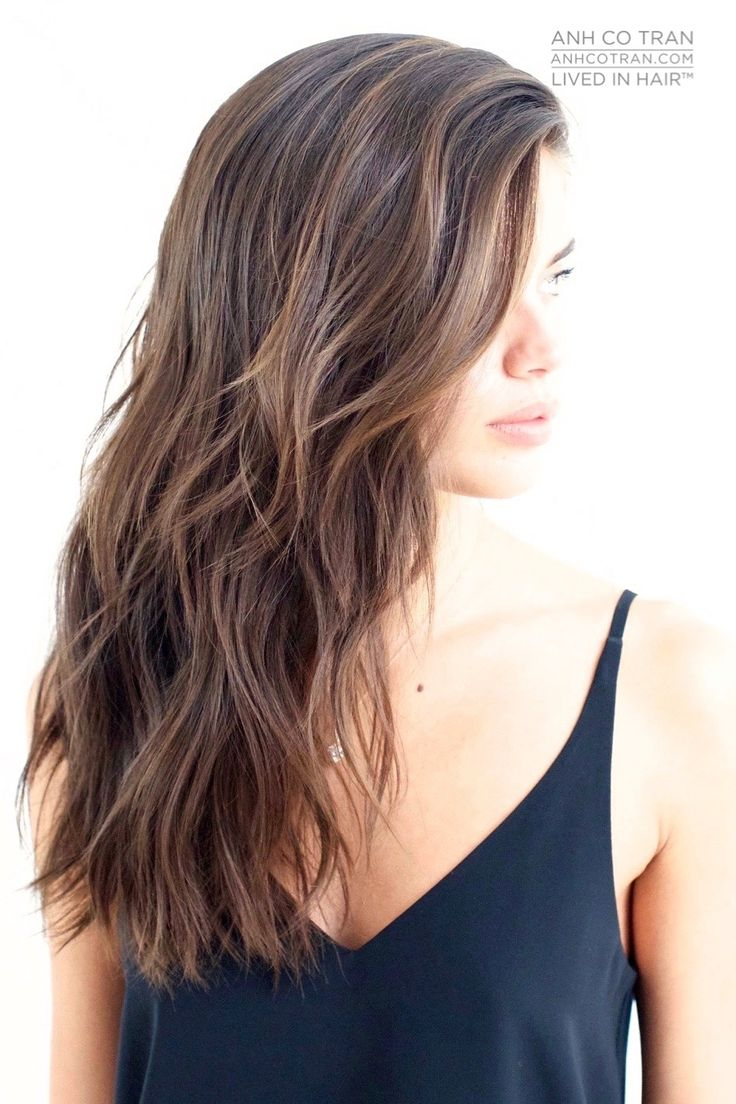 1000+ Ideas About Brunette Haircut On Pinterest