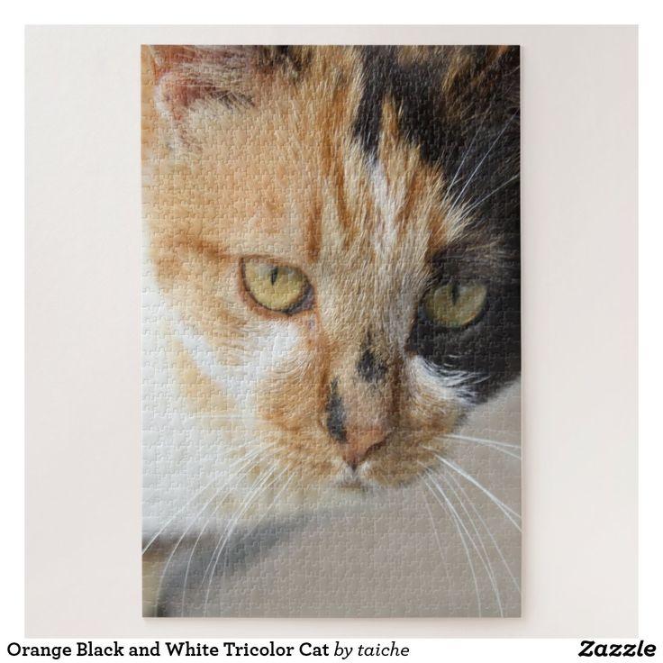 Pin on Cat, Kitten, Kitty, etc., Themed Jigsaw Puzzles