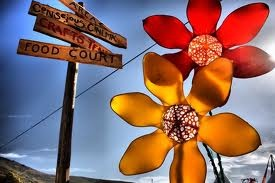 rocking the daisies - Google Search