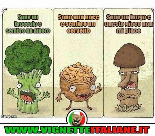 Le somiglianze vegetali :D (www.VignetteItaliane.it)
