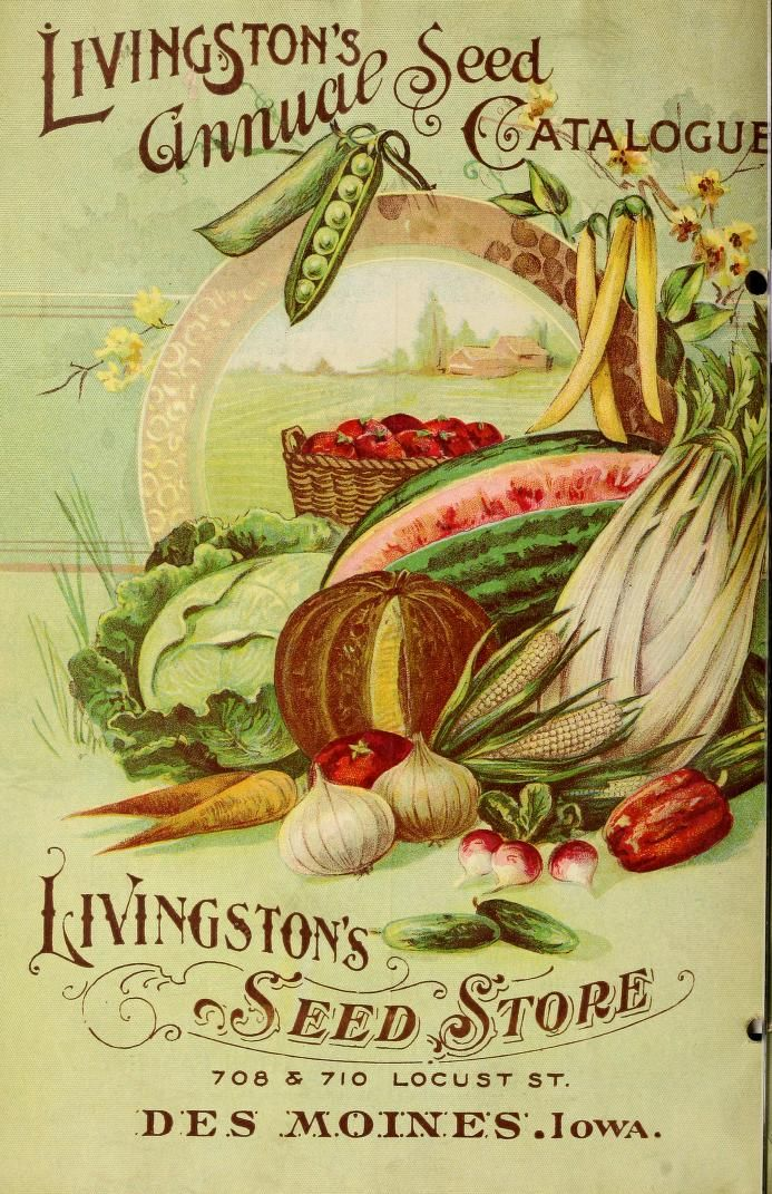 1899 - 12 annual seed catalogue : - Biodiversity Heritage Library. #BHLinbloom