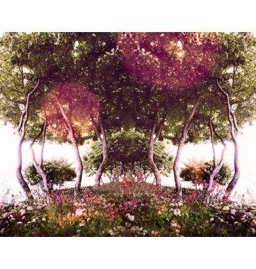 piękny, oputymistyczny obraz - zdjęcie na papierze fotograficznym, naklejone na pcv, zalaminowane- trwałe