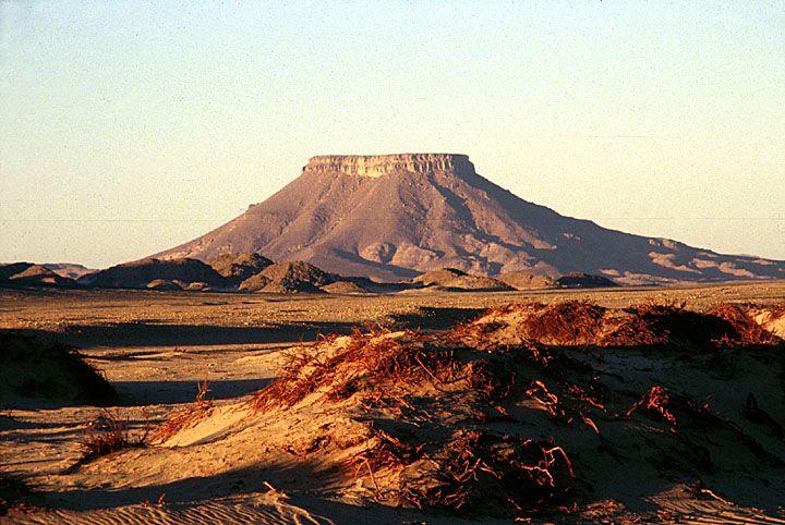 Deserts in Africa | Algerian Desert © Africa Focus: University of Wisconsin.