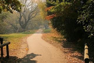 Autumn in Bright, Victoria