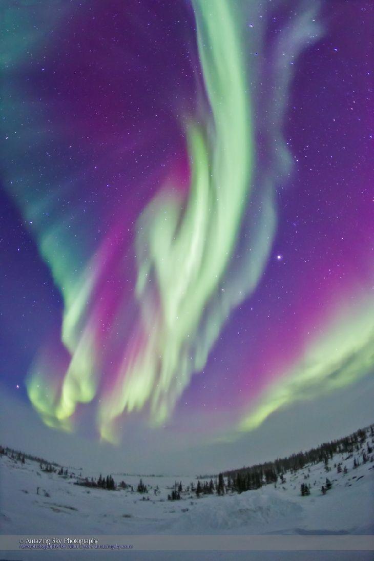 Northern Lights - Churchill, Manitoba