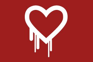 How to stay safe, as an online shopper, from the Heartbleed bug http://www.exactabacus.com/heartbleed/