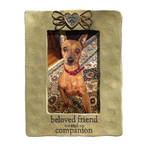 37 best Picture Frames Galore images on Pinterest | Pet gifts, Frame ...