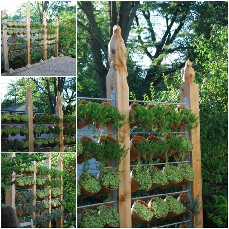 Herb Garden On Fence: Vertical Garden Privacy Fence