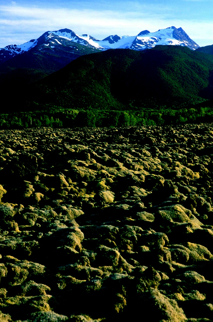 Lava and mountains, oh my!! The Nass Valley is truly a unique experience. #BC #Travel