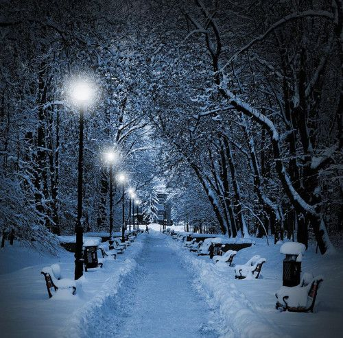 Winter Landscapes Christmas Blank Cards  Silent Night | eBay