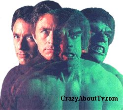 Dr. David Bruce Banner (Bill Bixby)  The Incredible Hulk (Lou Ferrigno)   The Incredible Hulk was a 60 minute fantasy series on CBS about a physician and research scientist who found a way to tap into our hidden strength.