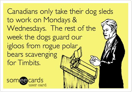 Canadians only take their dog sleds to work on Mondays & Wednesdays. The rest of the week the dogs guard our igloos from rogue polar bears scavenging for Timbits.