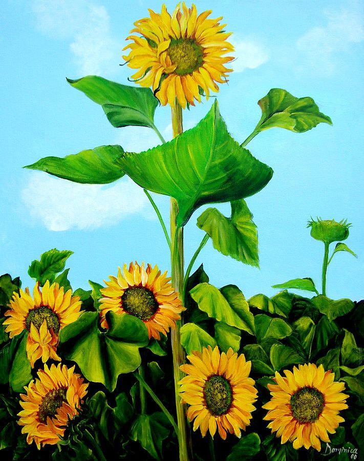 17 best images about dominica alcantara on pinterest for How to paint sunflowers in acrylic