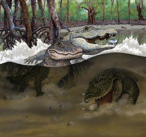 Reconstrucción de un pantano del Mioceno medio en lo que hoy es la Amazonia peruana con las tres nuevas especies de cocodrilos descubiertas.© Javier Herbozo