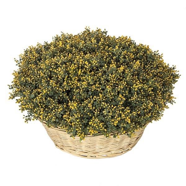 M s de 20 ideas incre bles sobre flores artificiales for Plantas decorativas artificiales df