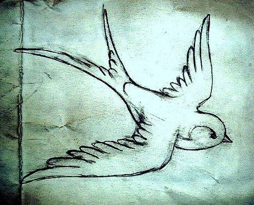 beautiful sketchy swallow