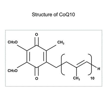 Introduciamo meglio il COENZIMA Q10 (UBIQUINONE) presente nel nostro prodotto #ExensialJaluronicMask! Il #CoenzimaQ10 o #ubiquinone rappresenta un elemento fondamentale per il corretto funzionamento del mitocondrio, un organello intracellulare che funge da centrale energetica. Favorendo la produzione di #ATP in presenza di #ossigeno, il coenzima Q10 è essenziale per mantenere una buona efficienza fisica; non è quindi un caso che esso si ritrovi in ogni cellula dell'organismo