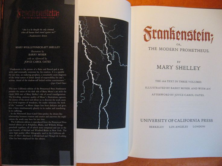 Frankenstein; Or, The Modern Prometheus by Mary Wollstonecraft Shelley and Barry Moser by Pistilbooks on Etsy