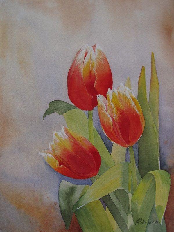 Tulipany. W. Podlecka