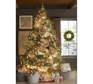 christmasWall Colors, Holiday, Gift, Decor Ideas, Galvanized Buckets, Grey Wall, Christmas Trees Ideas, Christmas Decor, Pottery Barns