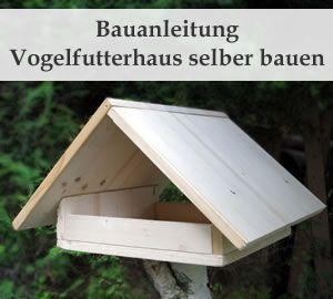 Vogelfutterhaus selber bauen – Bauanleitung