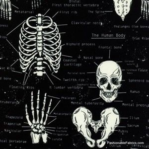 Tkanina Glow in the Dark Skeletons Timeless Treasures