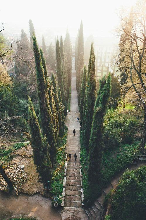 travel | verona, italy
