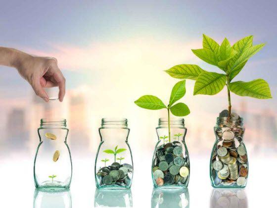 Informasi Investasi yang Bisa Meminimalisir Resiko Rugi