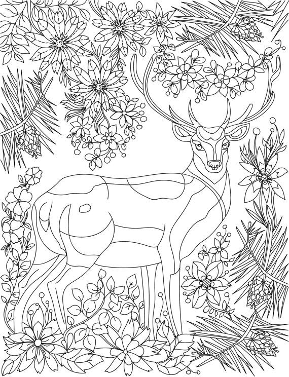 Deer Animal Adult Coloring Book Stress Relieving By LiltColoringBooks