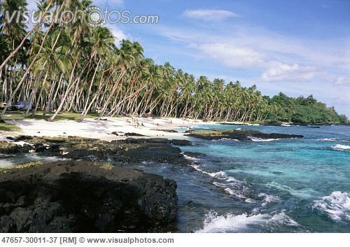 Western Samoa, Lefaga beach, rocky coastline, palm trees line white sands C1790