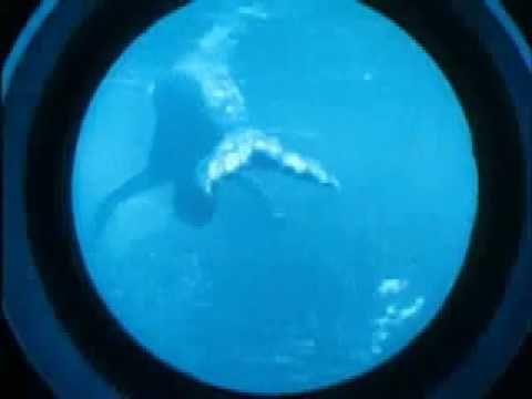 Disneyland Submarine Voyage MERMAIDS in COLOR