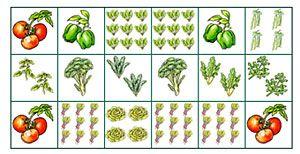 Advice on vegetable gardens