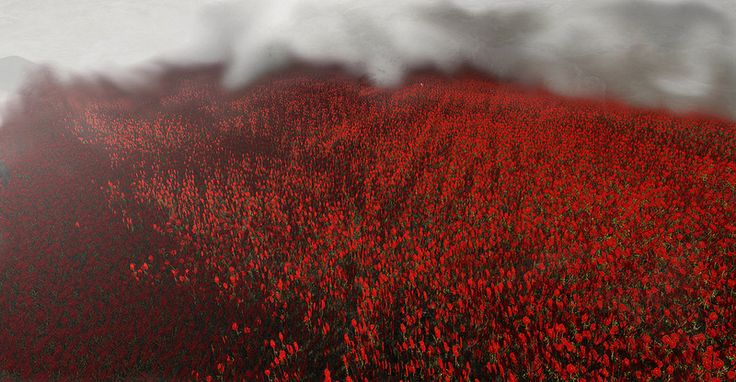 deep RED sea