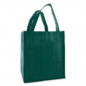 Reusable Recycled Grocery Bag